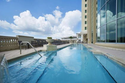 Pool | Embassy Suites by Hilton Tampa Downtown Convention Center