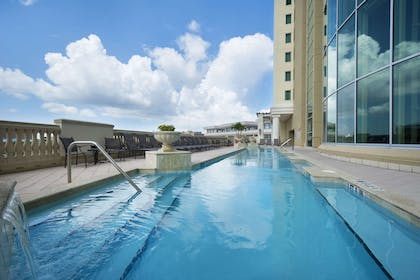 Pool   Embassy Suites by Hilton Tampa Downtown Convention Center
