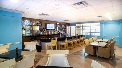 BarLounge   Embassy Suites by Hilton Tampa Airport Westshore