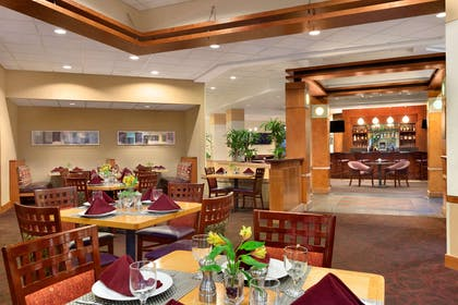 Restaurant | Embassy Suites by Hilton Tampa USF Near Busch Gardens