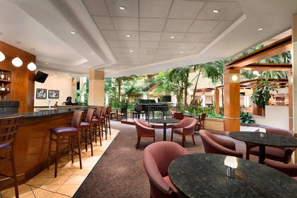 BarLounge | Embassy Suites by Hilton Tampa USF Near Busch Gardens