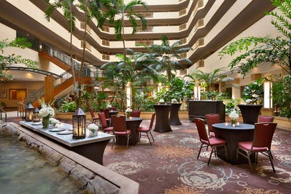Lobby   Embassy Suites by Hilton Tampa USF Near Busch Gardens