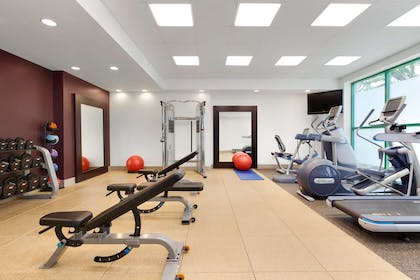 Health club fitness center gym   Embassy Suites by Hilton Tampa USF Near Busch Gardens