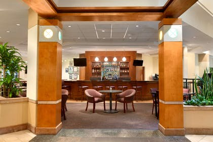 BarLounge   Embassy Suites by Hilton Tampa USF Near Busch Gardens