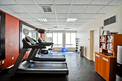 Health club | Hilton Garden Inn Tampa North Busch Gardens
