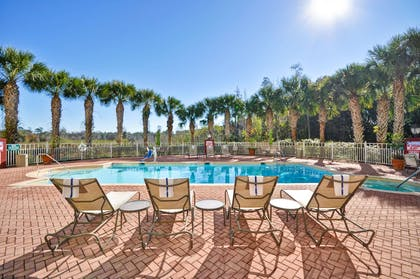 Pool | Hilton Garden Inn Tampa North Busch Gardens
