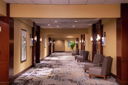 Miscellaneous | DoubleTree by Hilton Hotel Tampa Airport - Westshore