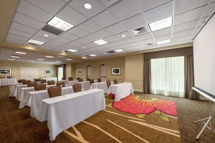 Meeting Room | Hilton Garden Inn Orlando East/UCF Area