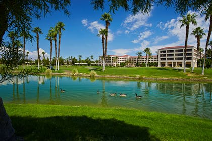 Recreational Facility   DoubleTree by Hilton Hotel Golf Resort Palm Springs