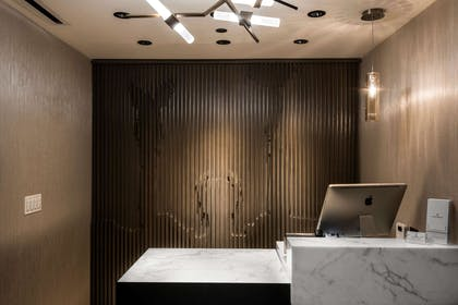 Spa | LondonHouse Chicago, Curio Collection by Hilton