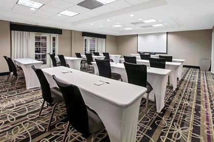 Meeting Room | La Quinta Inn & Suites by Wyndham Dallas Arlington South