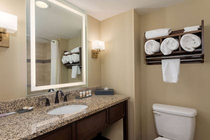 Guest room bath | La Quinta Inn & Suites by Wyndham Pigeon Forge