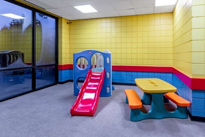 Recreational Facility   La Quinta Inn & Suites by Wyndham Madison American Center