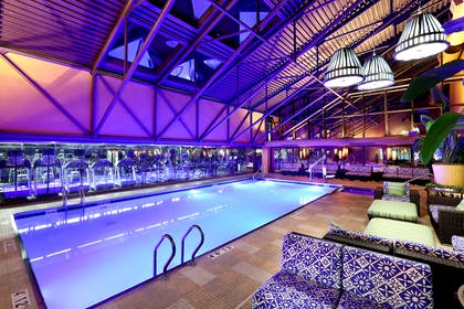 Pool | Amway Grand Plaza, Curio Collection by Hilton