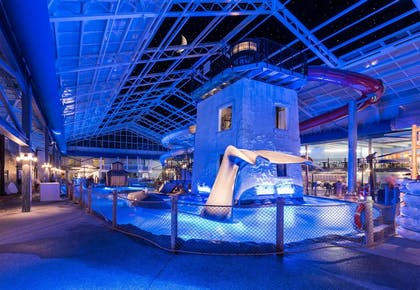 Whale | Cape Codder Resort and Spa