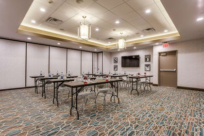 Meeting Room | Hampton Inn & Suites Dallas - Central Expy North Park Area