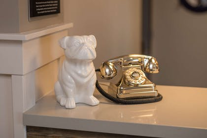 Front Desk Winston and House Phone | Best Western Plus Cameron's Inn