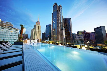 Pool | The Statler Dallas Curio Collection By Hilton