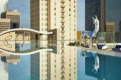 Pool   The Statler Dallas Curio Collection By Hilton