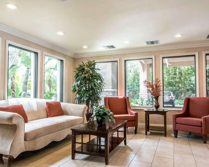 Relax in the hotel lobby | Quality Inn & Suites Anaheim Maingate