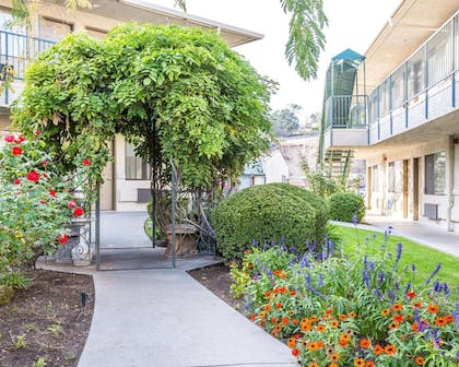Enjoy the courtyard area | Comfort Inn Yosemite Area