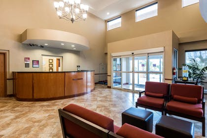 Hotel lobby | Comfort Suites Tampa Airport North