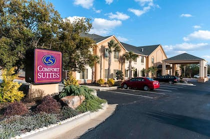 Beautiful flowers and shrubs surrounding the hotel | Comfort Suites Milledgeville
