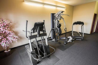 Exercise room with television | Comfort Inn Crystal Lake - Algonquin