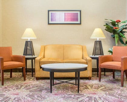 Sitting area | Comfort Suites Cicero - Syracuse North
