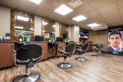 Hotel salon | Curtiss Hotel, An Ascend Hotel Collection Member
